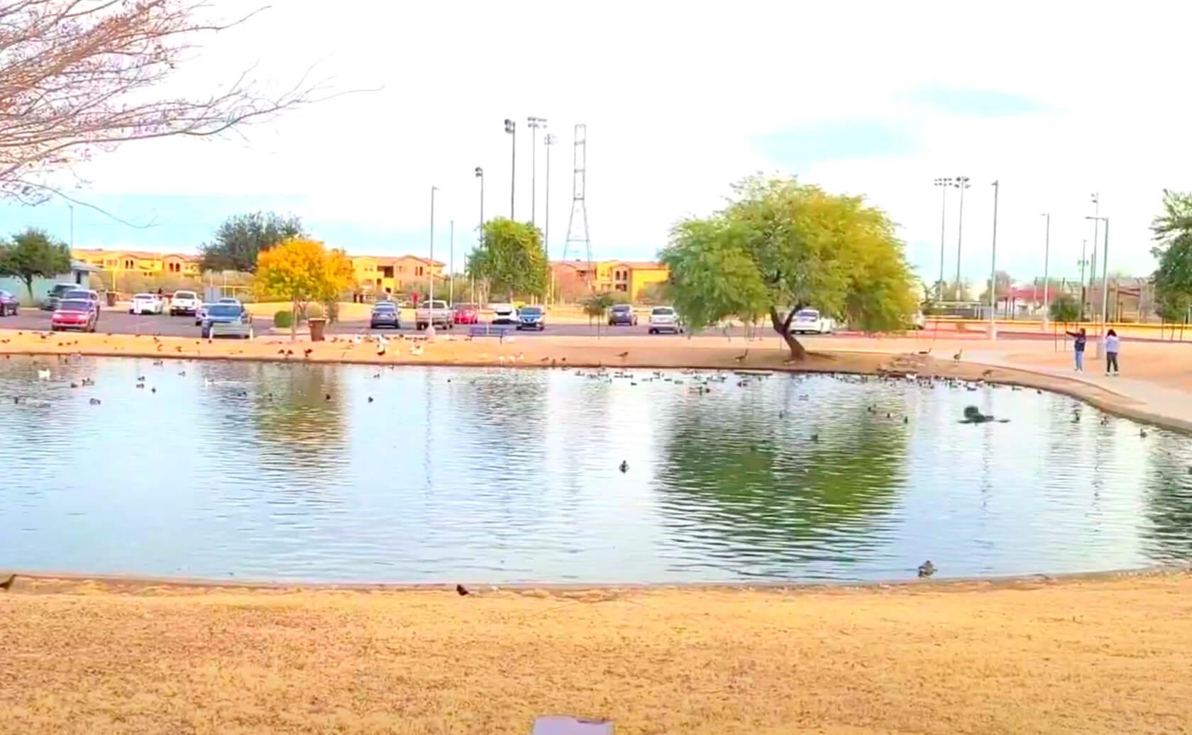 Friendship-Lake-fishing-guide-report-Avondale-AZ-03