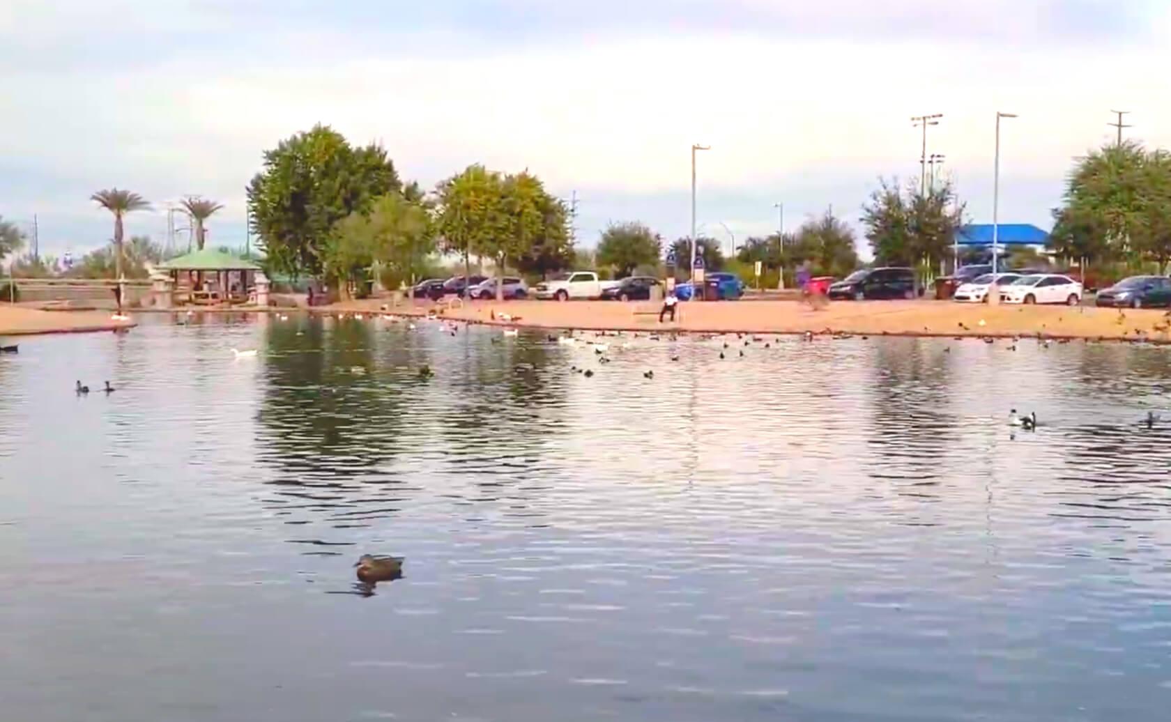 Friendship-Lake-fishing-guide-report-Avondale-AZ-04