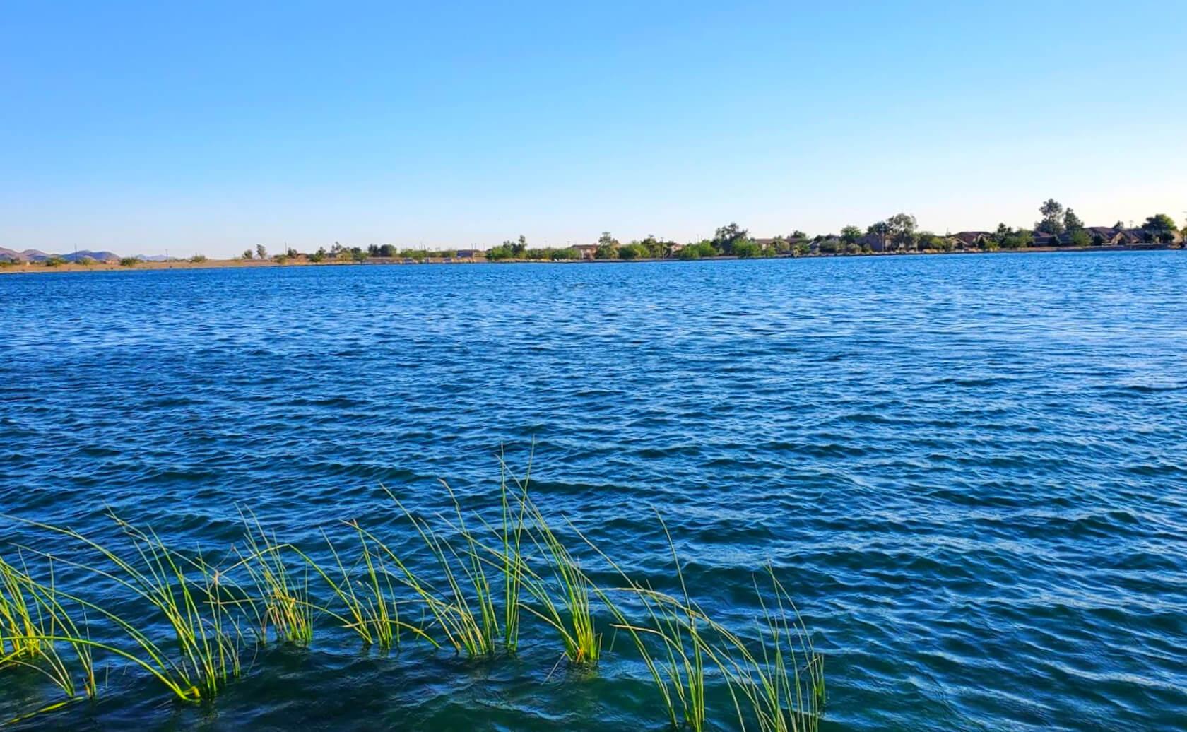 Gilbert-Regional-Park-Pond-Lake-Fishing-Guide-Report-Gilbert-AZ-01