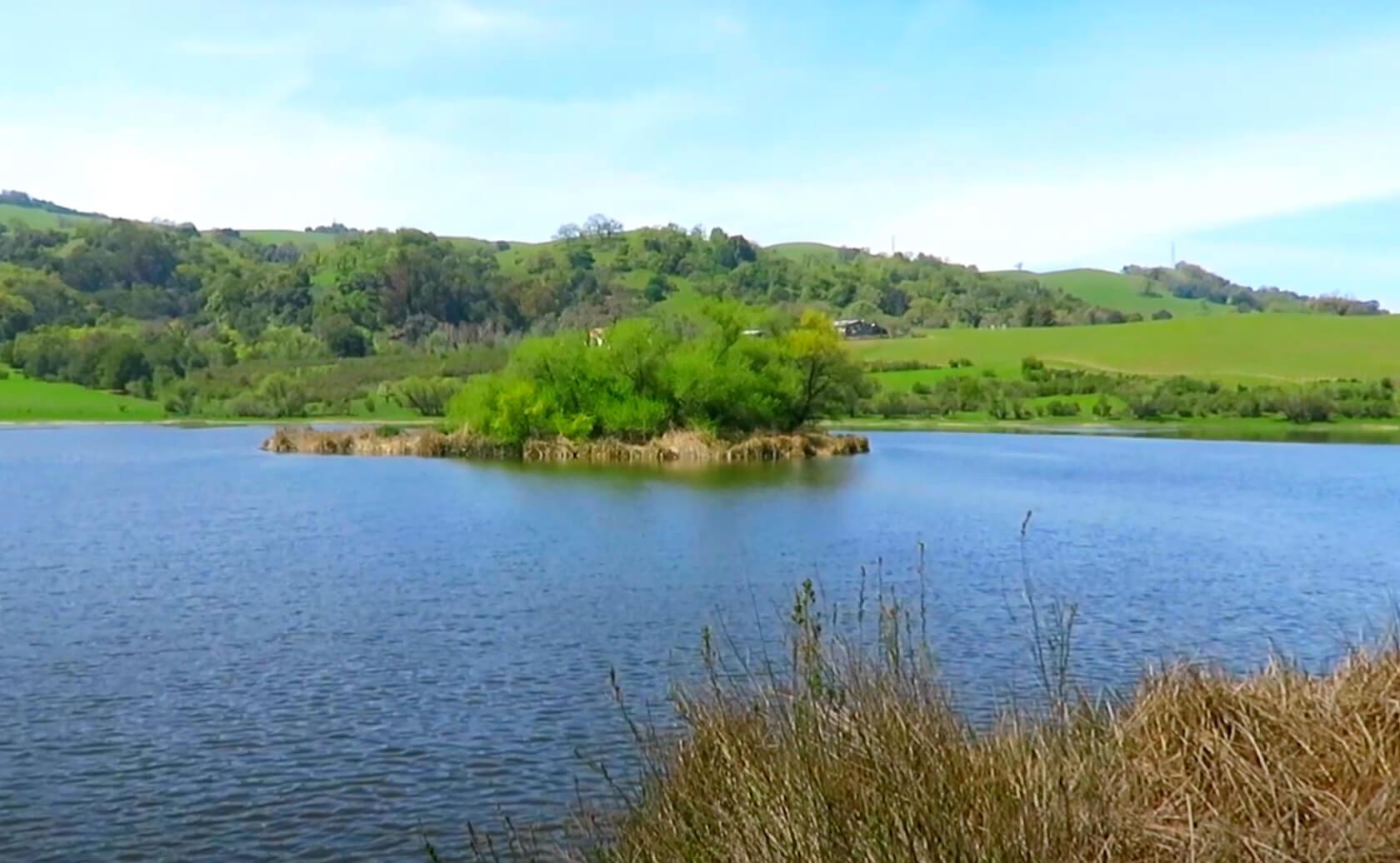 Grant-Lake-Fishing-Guide-Report-Hamilton-CA-02
