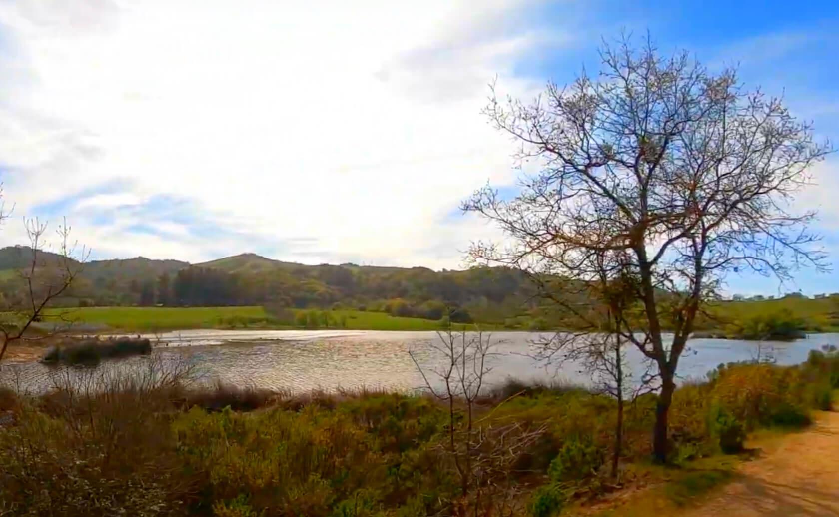 Grant-Lake-Fishing-Guide-Report-Hamilton-CA-03
