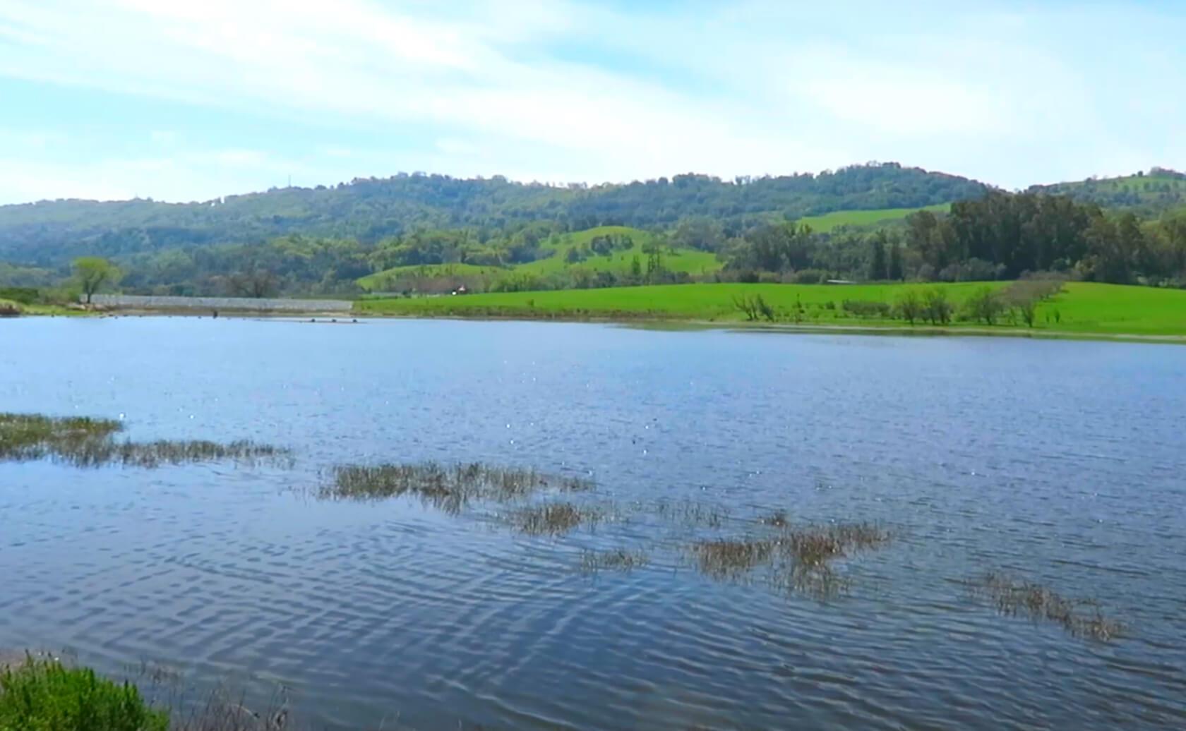 Grant-Lake-Fishing-Guide-Report-Hamilton-CA-04