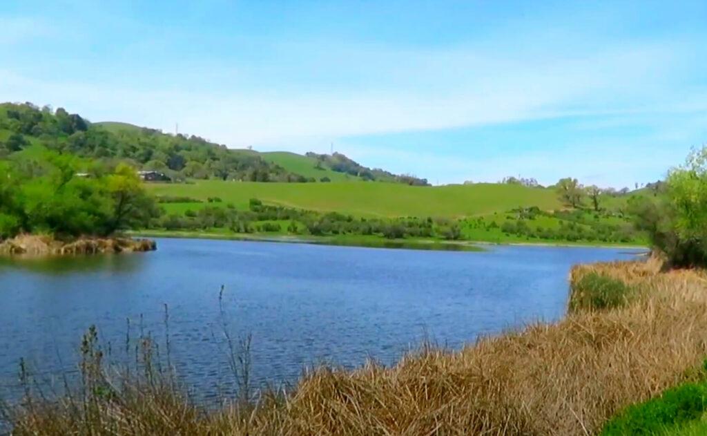 Grant-Lake-Fishing-Guide-Report-Hamilton-CA-05
