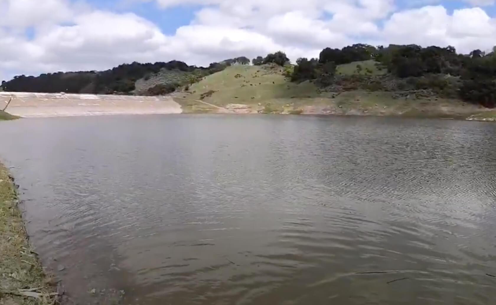 Guadalupe-Lake-Fishing-Guide-Report-CA-03