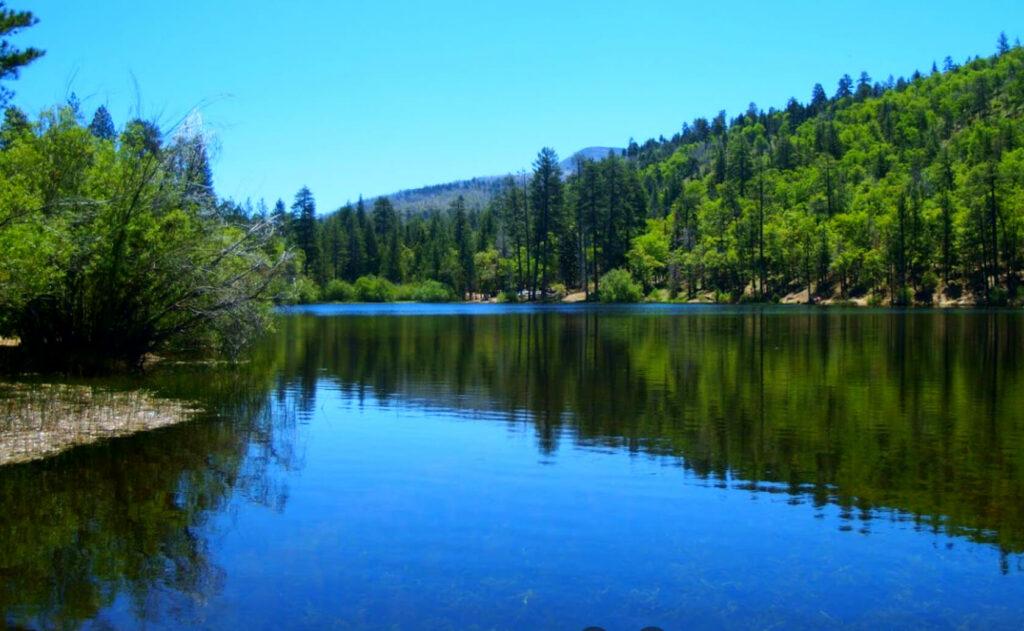 Jenks-Lake-Fishing-Guide-Report-California-02
