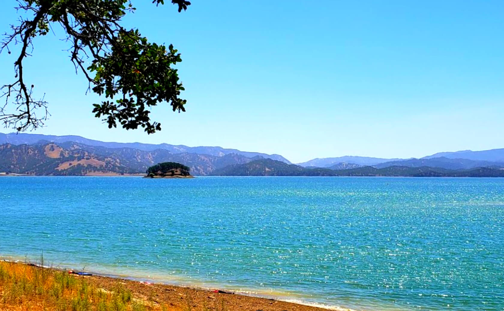Lake-Berryessa-Fishing-Guide-Report-Napa-CA-03