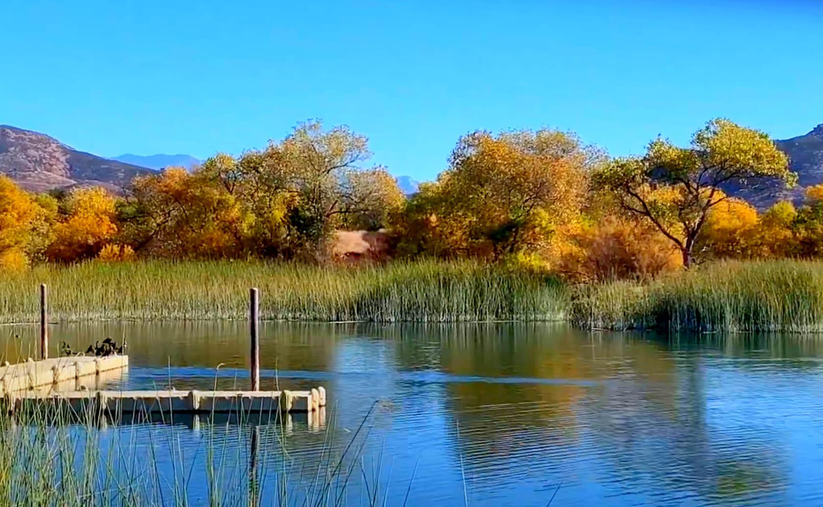 Lake-Skinner-Fishing-Guide-Report-Winchester-CA-04