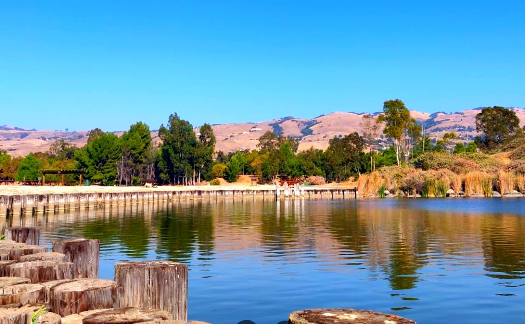 Lake-Cunningham-Fishing-Guide-Report-San-Jose-CA-01 Copy 2