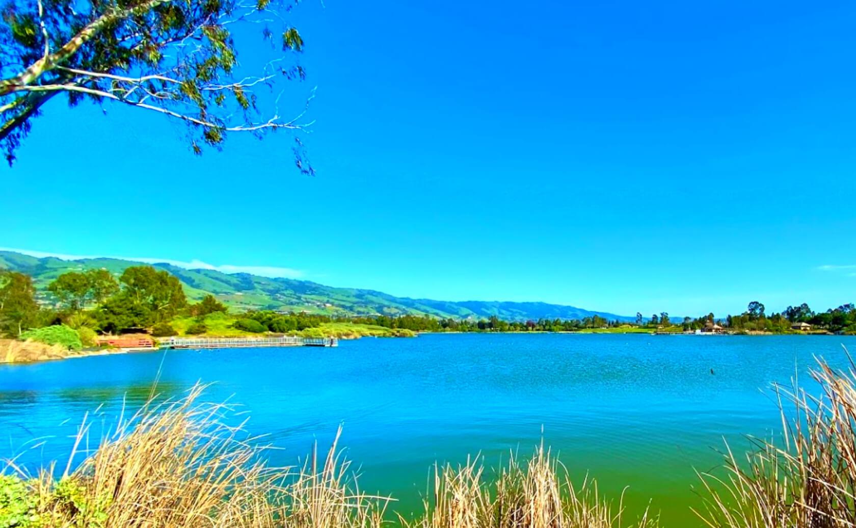 Lake-Cunningham-Fishing-Guide-Report-San-Jose-CA-01 Copy 3