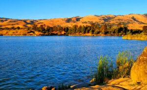 Lake-Cunningham-Fishing-Guide-Report-San-Jose-CA-01 Copy