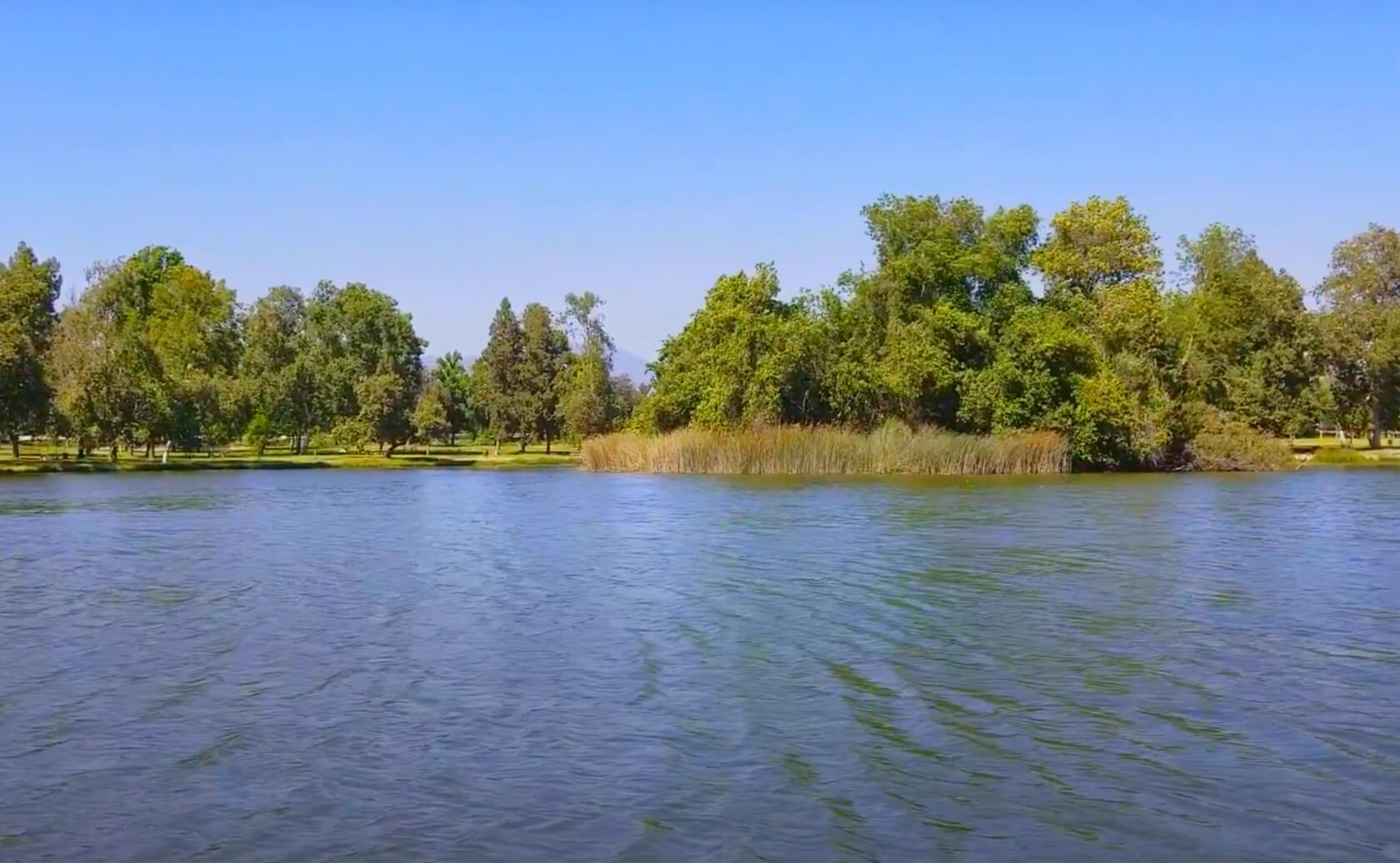 Legg-Lake-Fishing-Guide-Report-South-El-Monte-CA-91733-01
