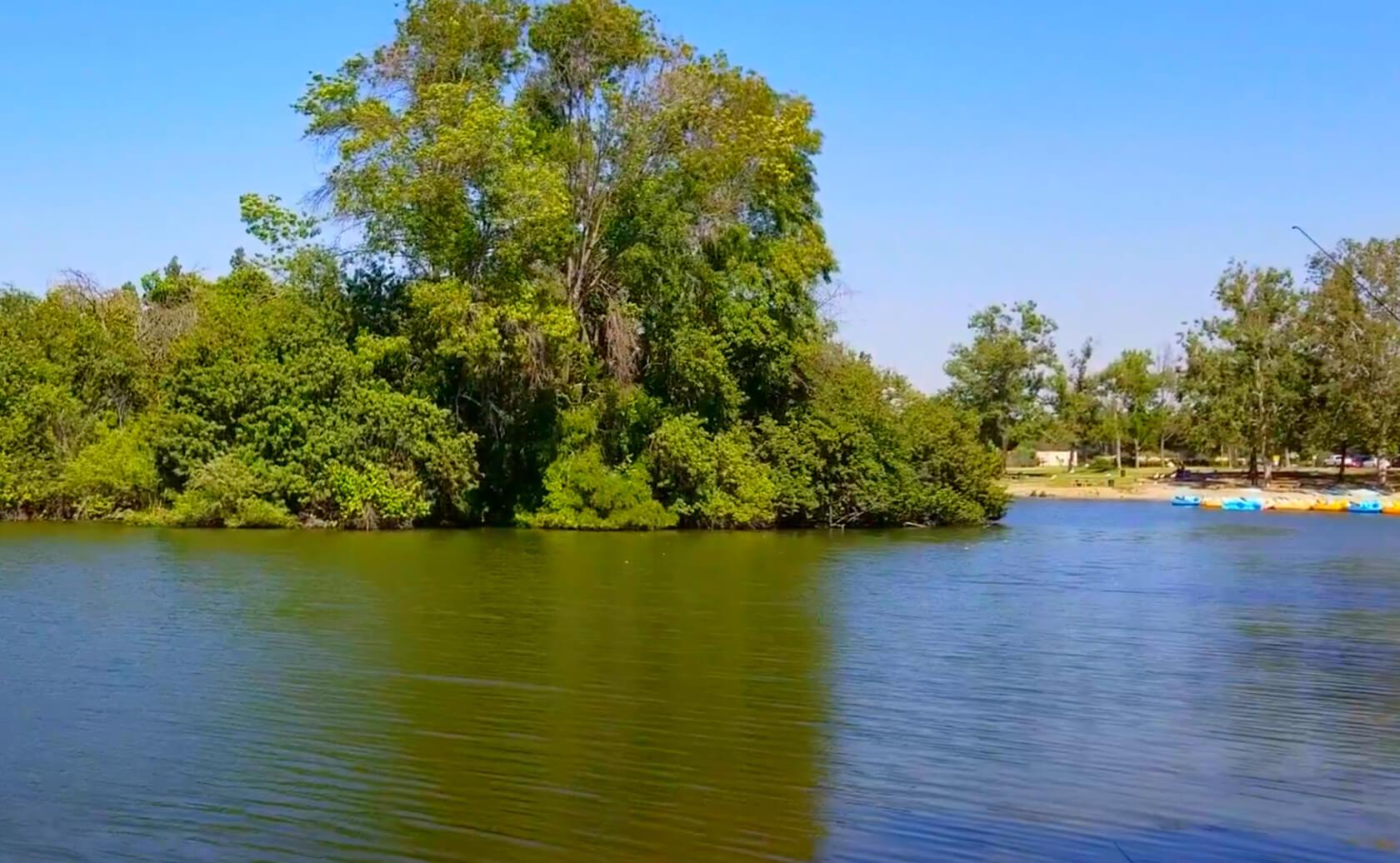 Legg-Lake-Fishing-Guide-Report-South-El-Monte-CA-91733-03