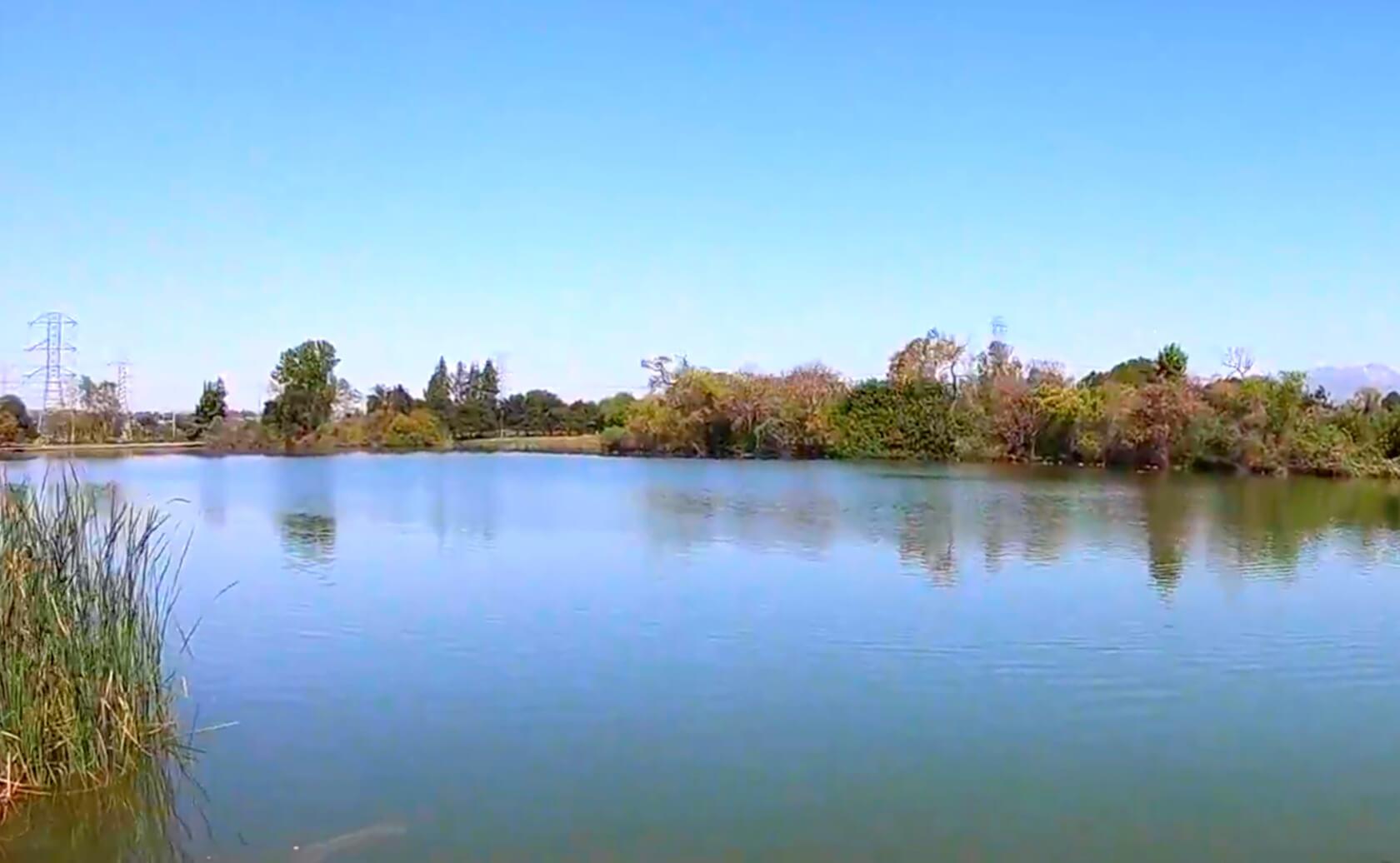 Legg-Lake-Fishing-Guide-Report-South-El-Monte-CA-91733-05