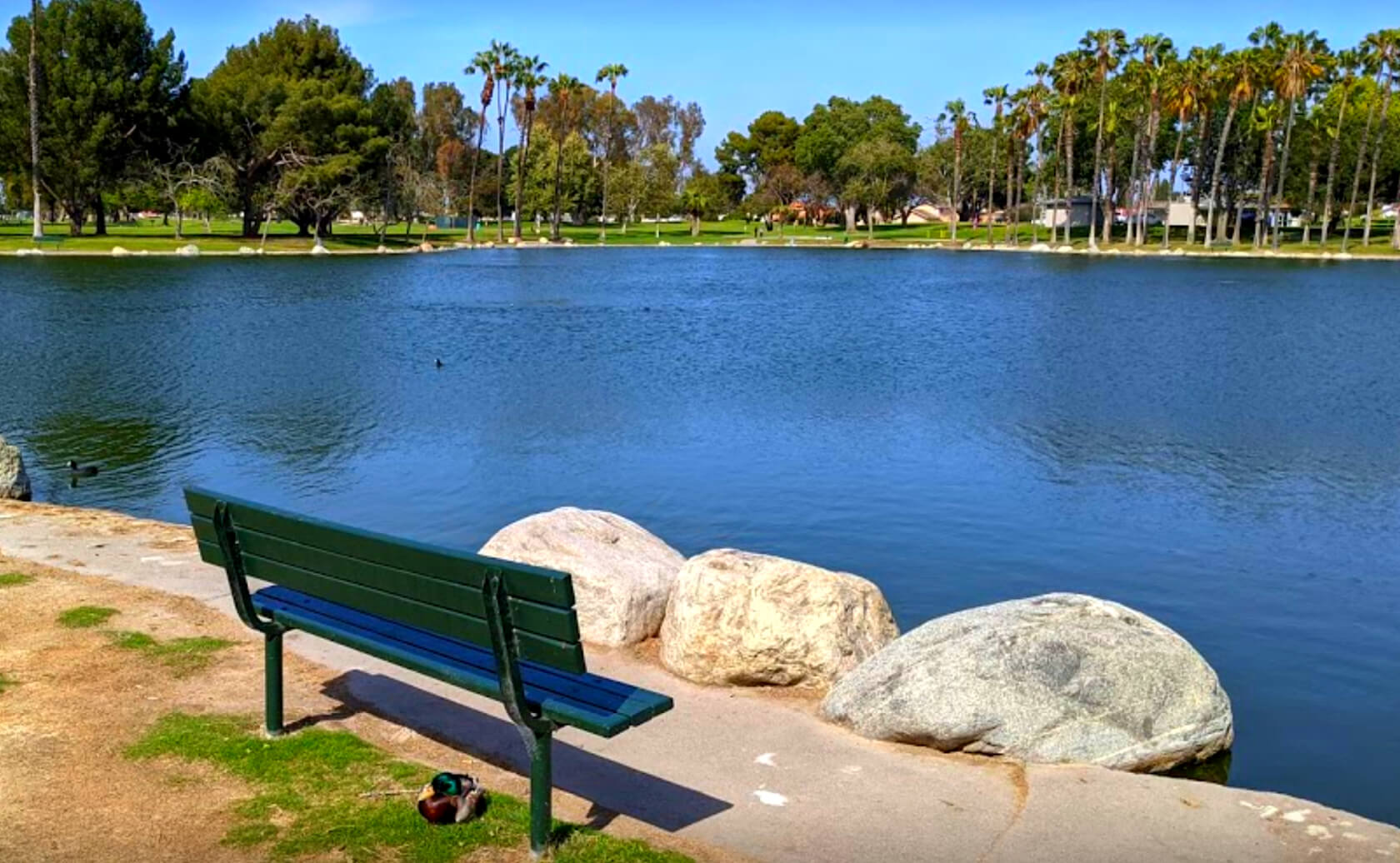 Mile-Square-Park-Lake-Fishing-Guide-Report-Fountain-Valley-CA-04