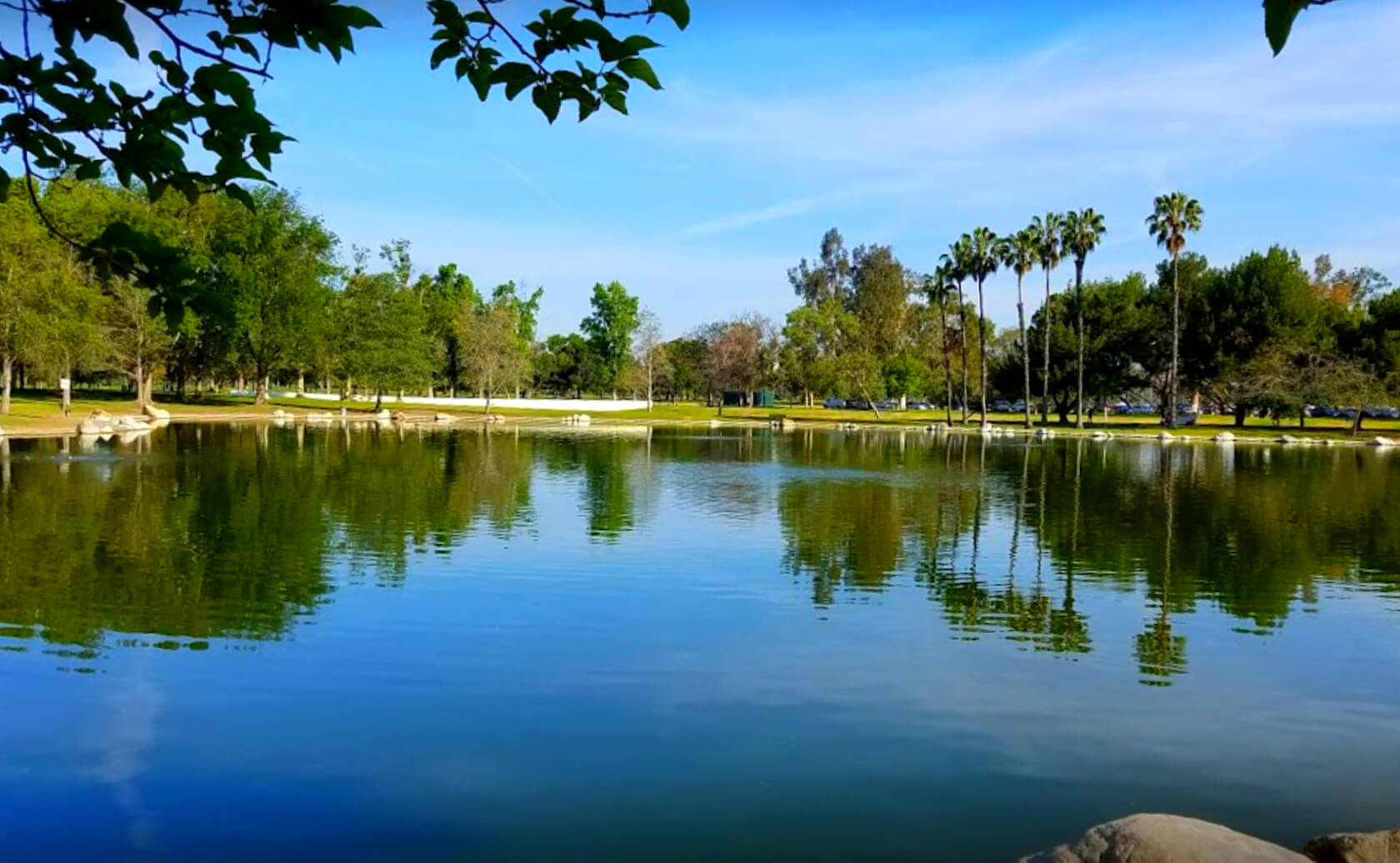 Mile-Square-Park-Lake-Fishing-Guide-Report-Fountain-Valley-CA-05