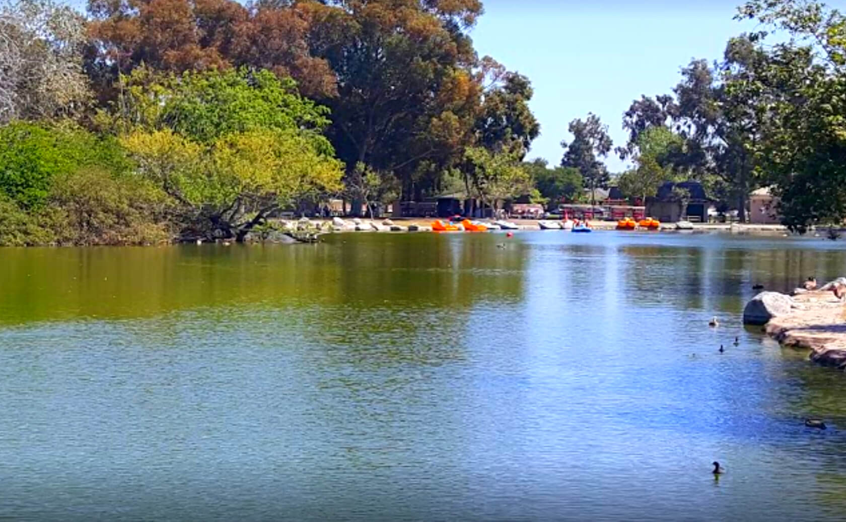 Mile-Square-Park-Lake-Fishing-Guide-Report-Fountain-Valley-CA-06