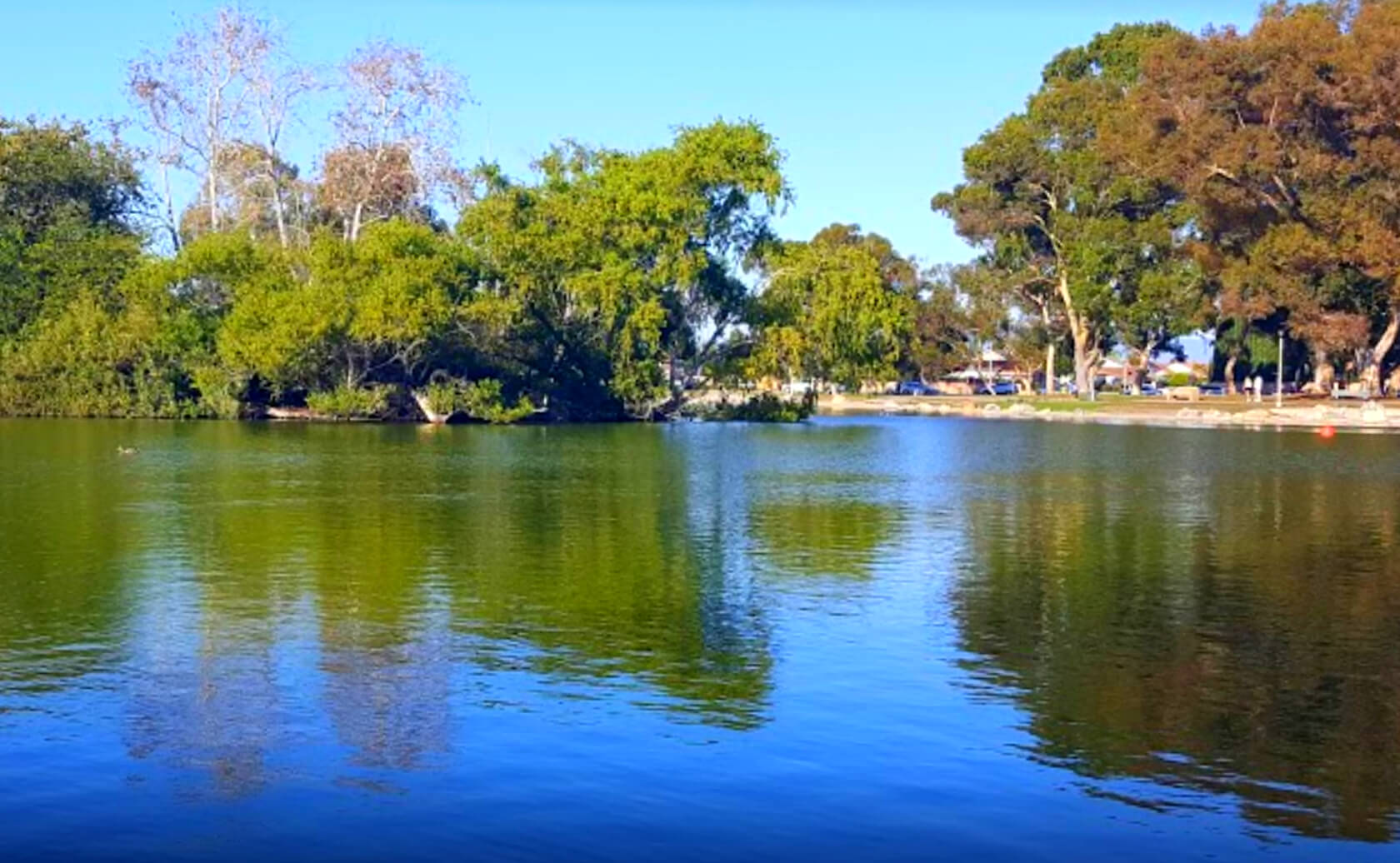 Mile-Square-Park-Lake-Fishing-Guide-Report-Fountain-Valley-CA-07