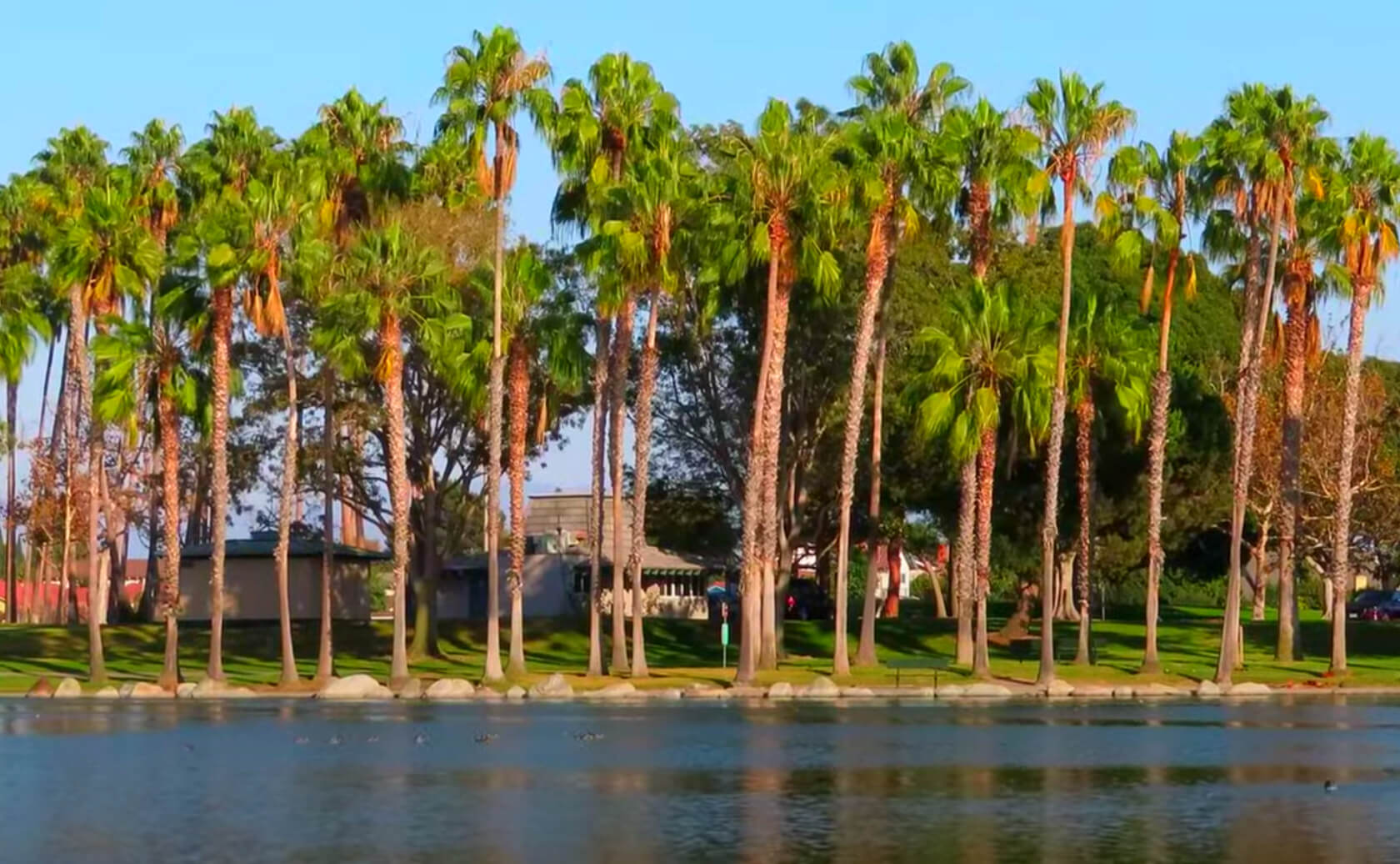 Mile-Square-Park-Lake-Fishing-Guide-Report-Fountain-Valley-CA-08