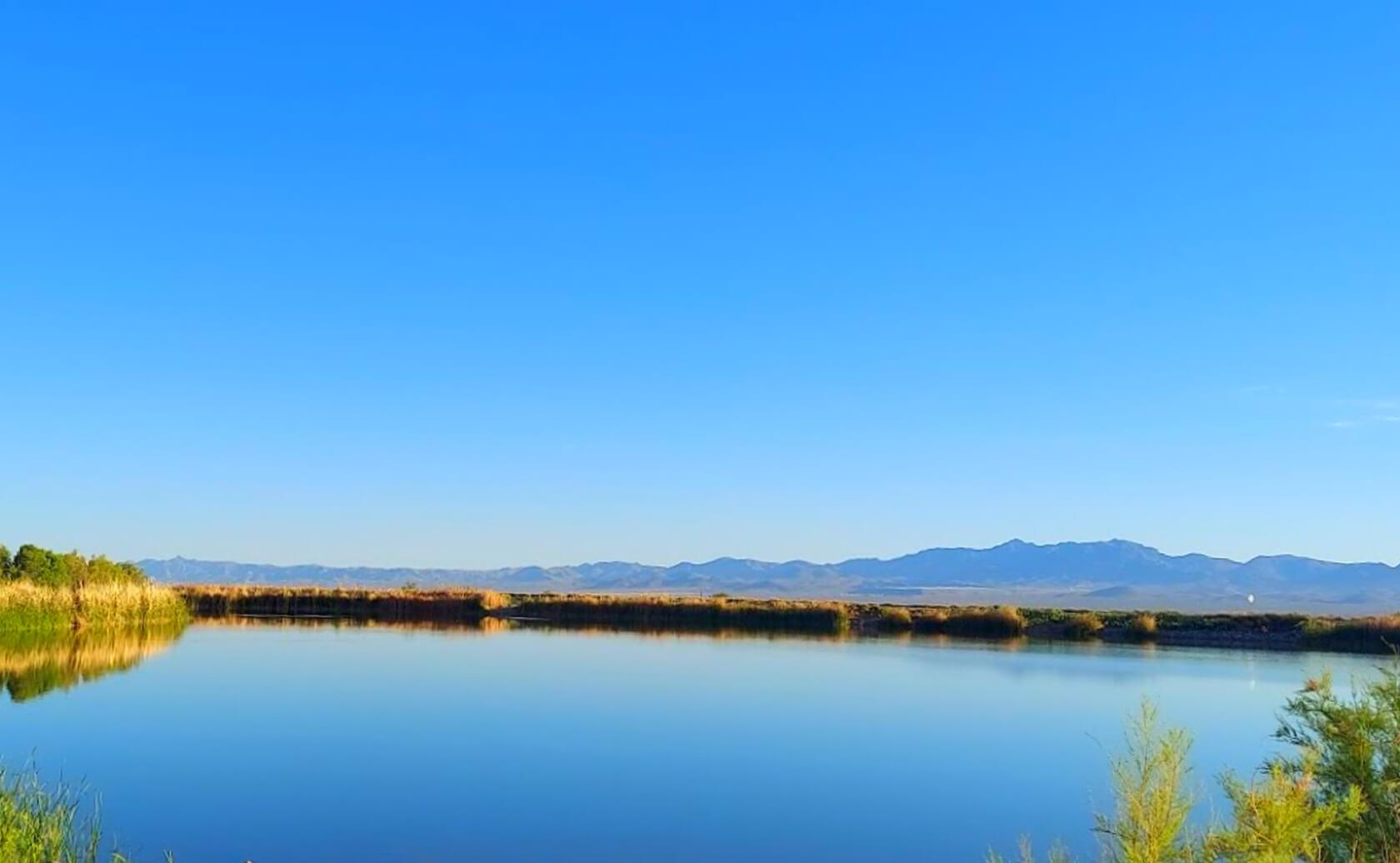 Roper-Lake-Fishing-Guide-Report-Safford-AZ-01