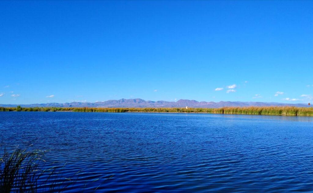 Roper-Lake-Fishing-Guide-Report-Safford-AZ-02