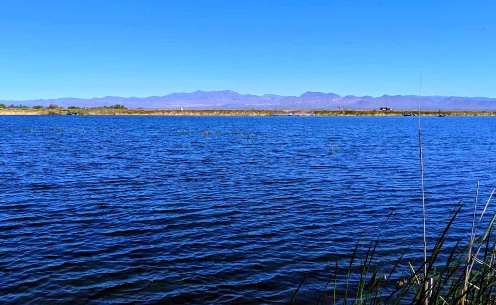 Roper-Lake-Fishing-Guide-Report-Safford-AZ-04