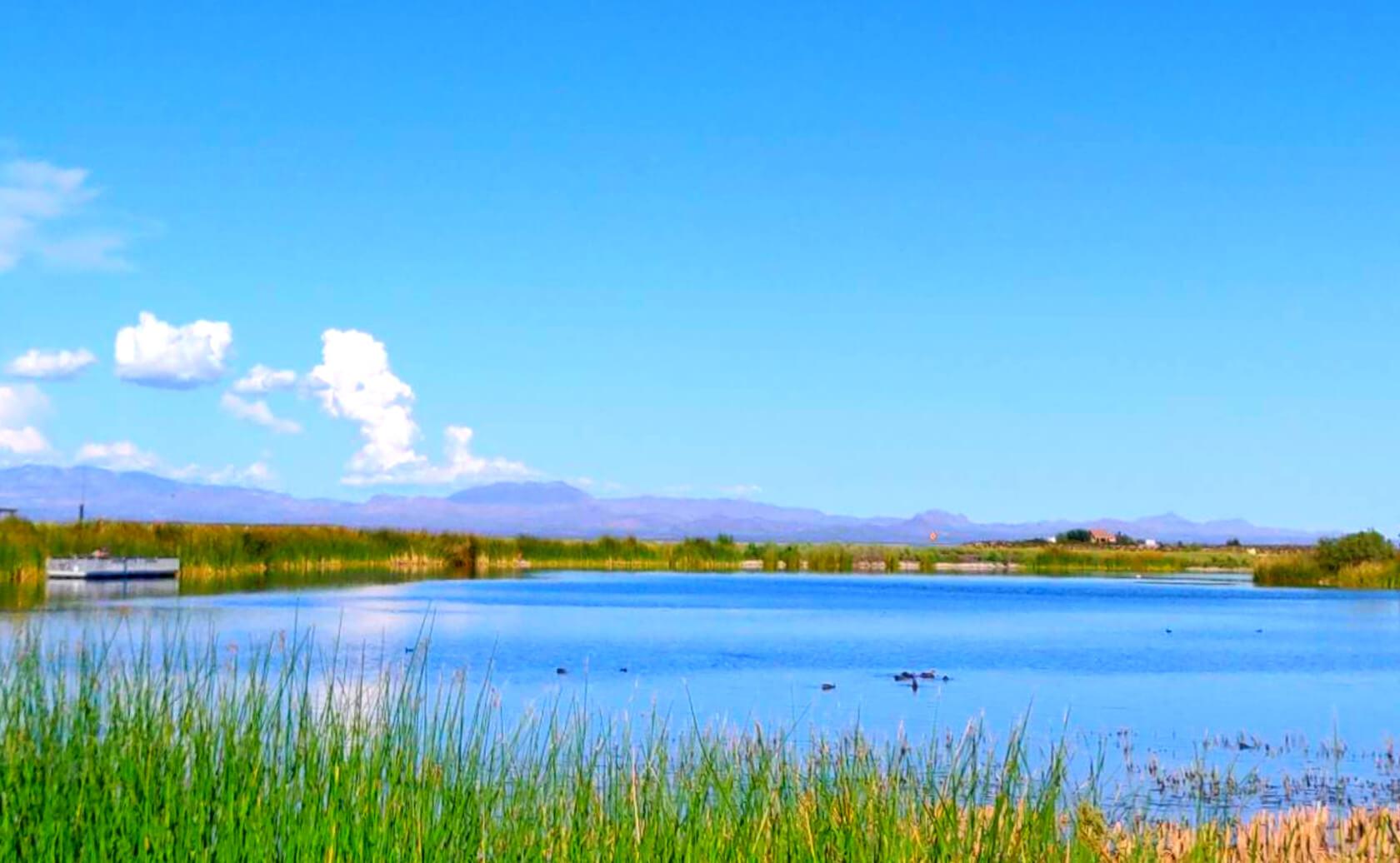 Roper-Lake-Fishing-Guide-Report-Safford-AZ-06