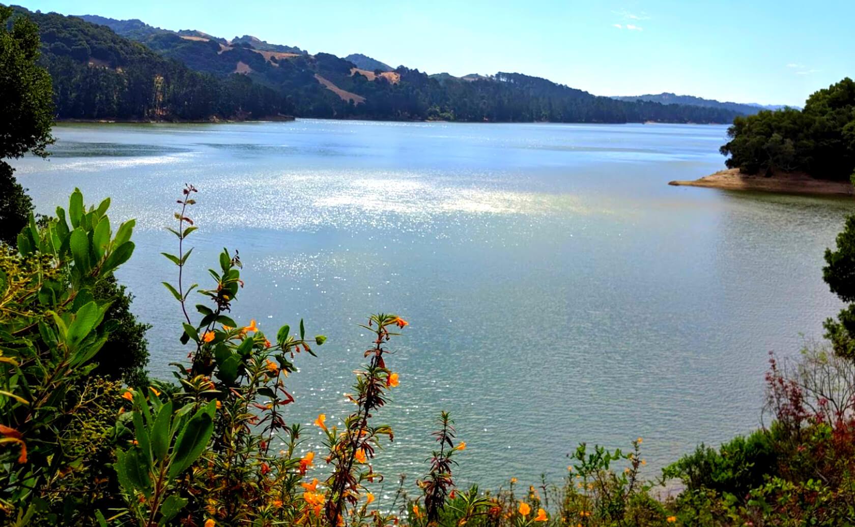San-Pablo-Lake-Reservoir-Fishing-Guide-Report-California-05