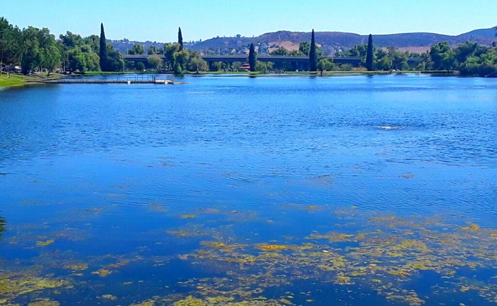 Santee-Lakes-Fishing-Guide-Report-California-04