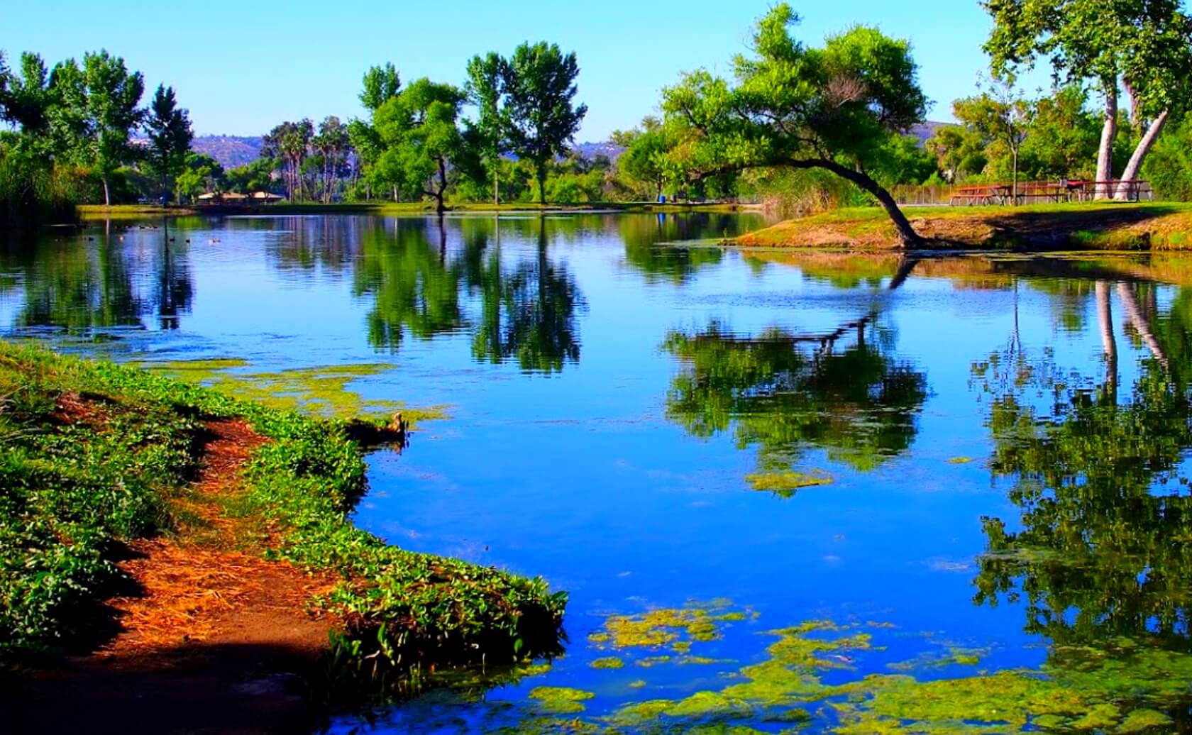 Santee-Lakes-Fishing-Guide-Report-California-05