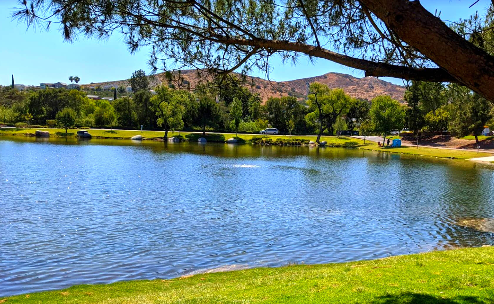 Santee-Lakes-Fishing-Guide-Report-California-06