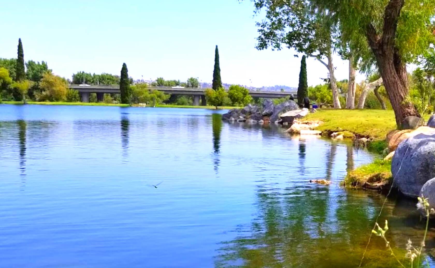 Santee-Lakes-Fishing-Guide-Report-California-07