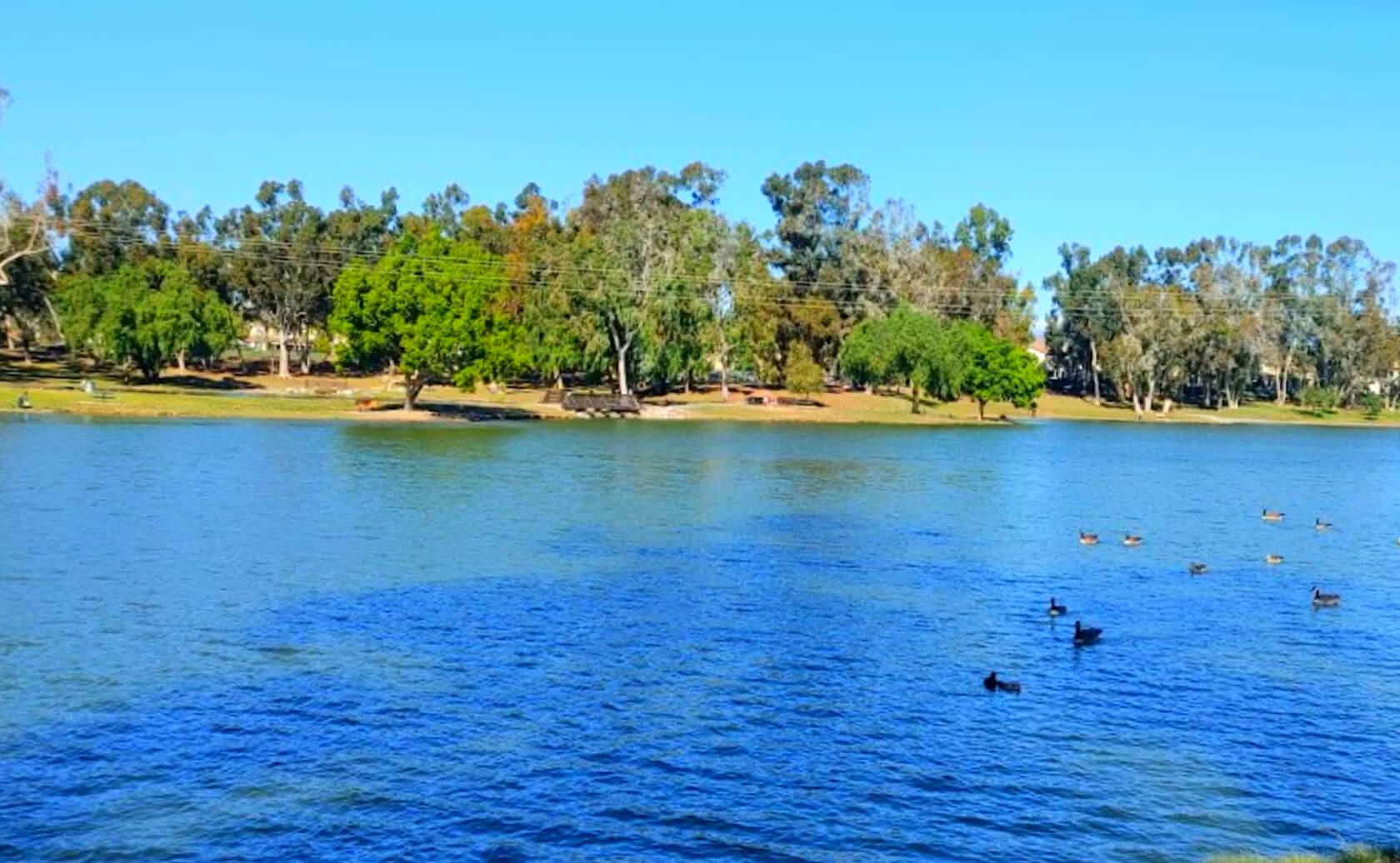 Tri-City-Park-Lake-Fishing-Guide-Report-Placentia-CA-03