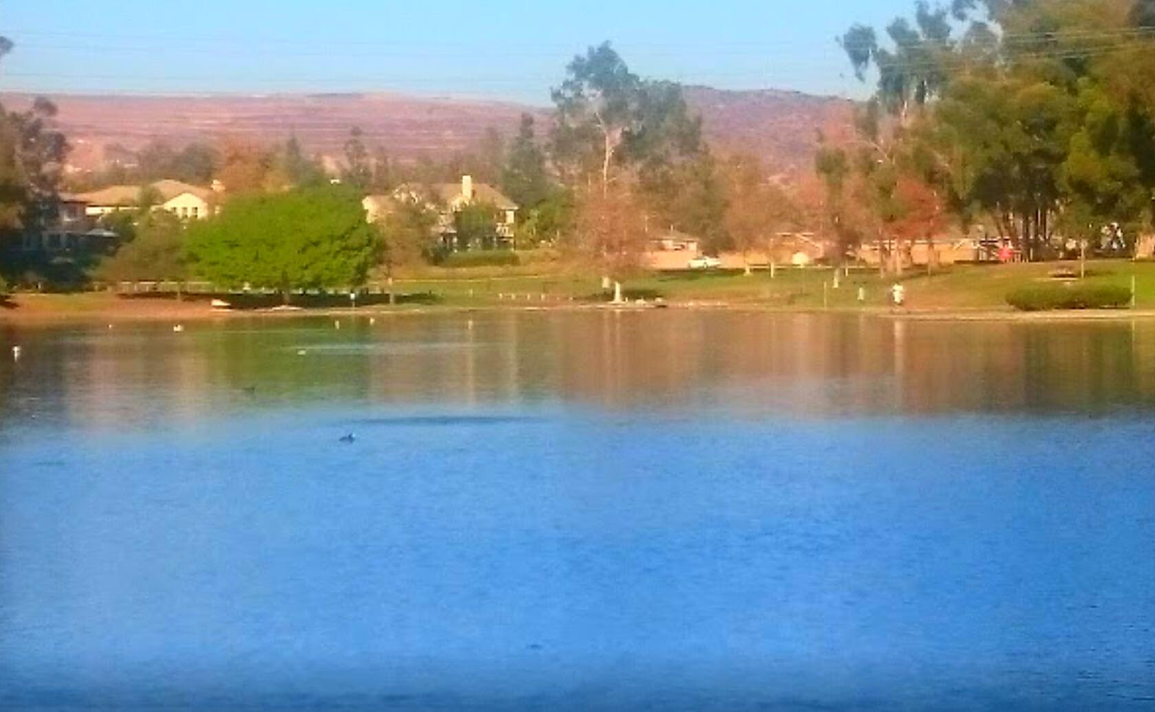 Tri-City-Park-Lake-Fishing-Guide-Report-Placentia-CA-04
