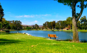 Tri-City-Park-Lake-Fishing-Guide-Report-Placentia-CA-06