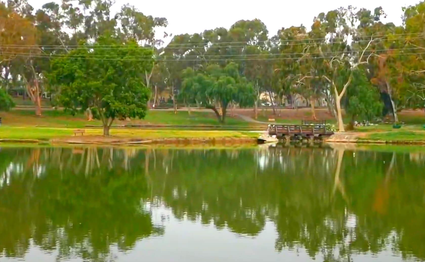 Tri-City-Park-Lake-Fishing-Guide-Report-Placentia-CA-07