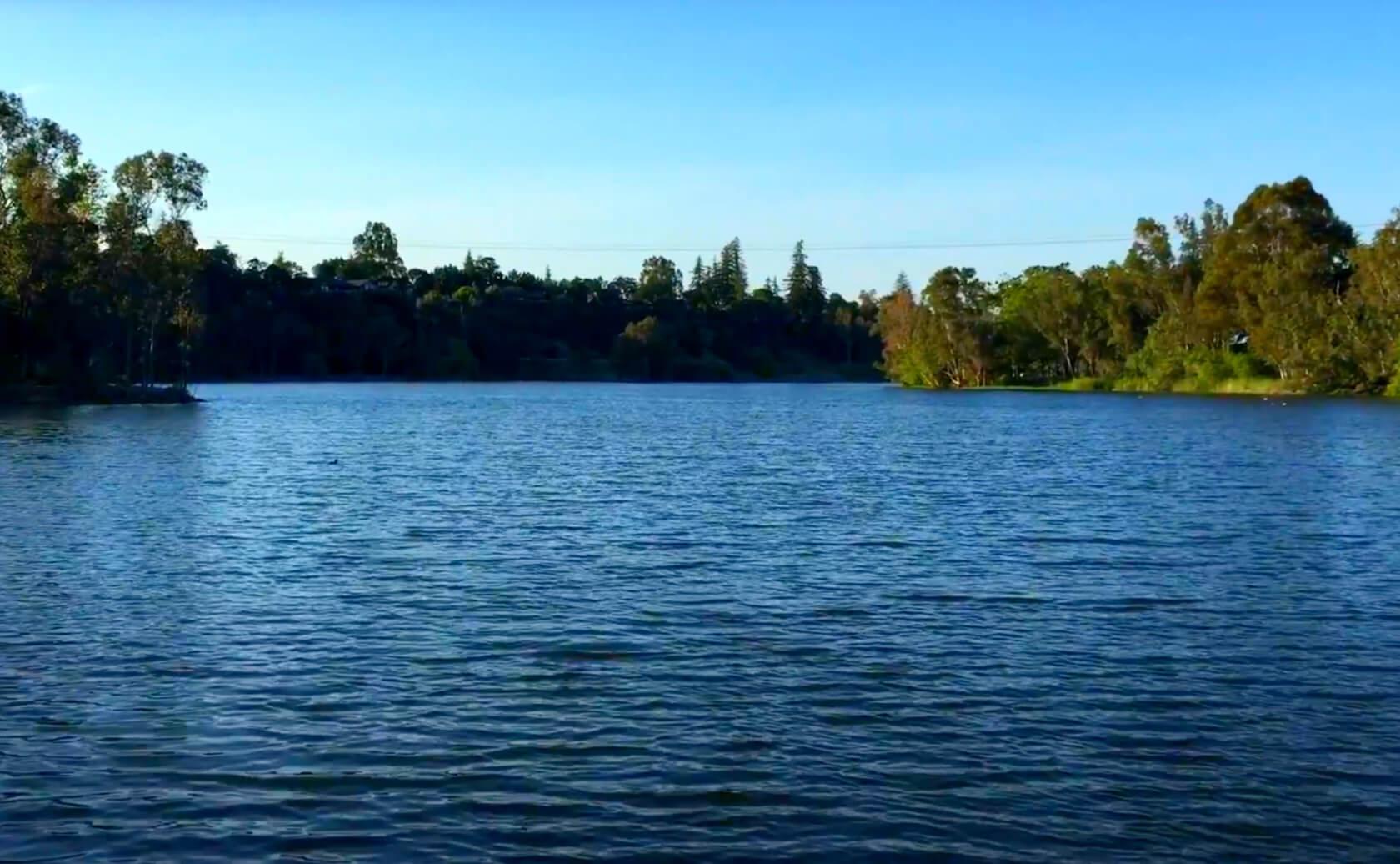 Vasona-Lake-Fishing-Guide-Report-Los-Gatos-CA-02