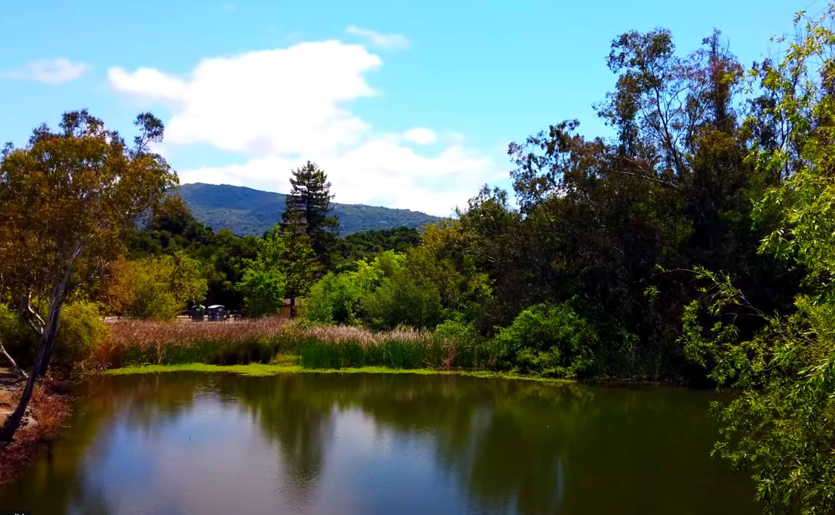 Vasona-Lake-Fishing-Guide-Report-Los-Gatos-CA-03