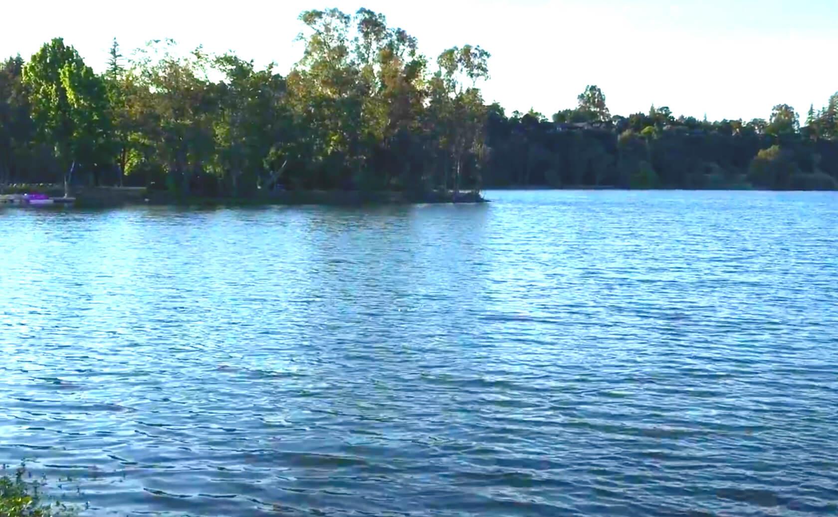 Vasona-Lake-Fishing-Guide-Report-Los-Gatos-CA-06