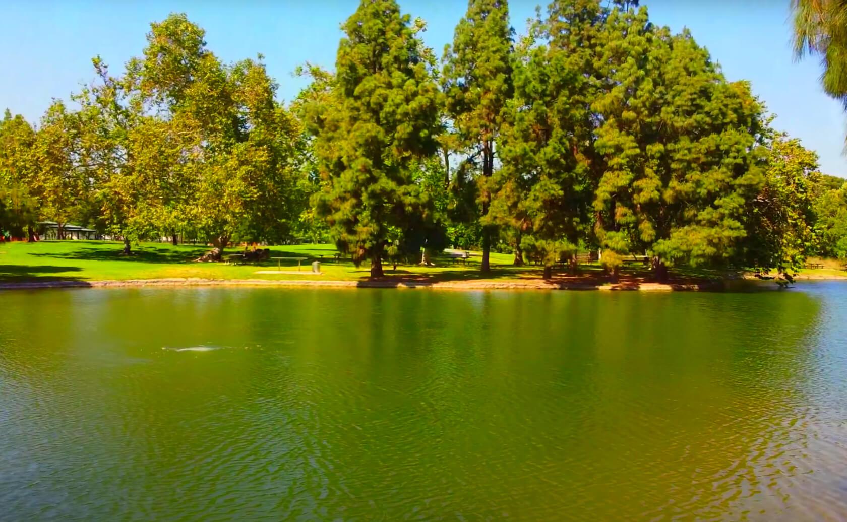 Yorba-Regional-Park-Lake-Fishing-Guide-Report-Anaheim-CA-01 Copy 9