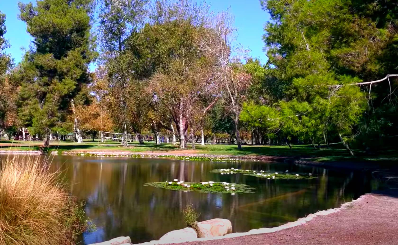 Yorba-Regional-Park-Lake-Fishing-Guide-Report-Anaheim-CA-04