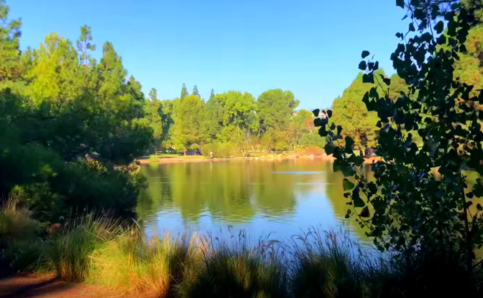 Yorba-Regional-Park-Lake-Fishing-Guide-Report-Anaheim-CA-05