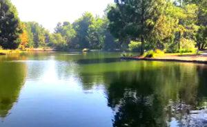 Yorba-Regional-Park-Lake-Fishing-Guide-Report-Anaheim-CA-08