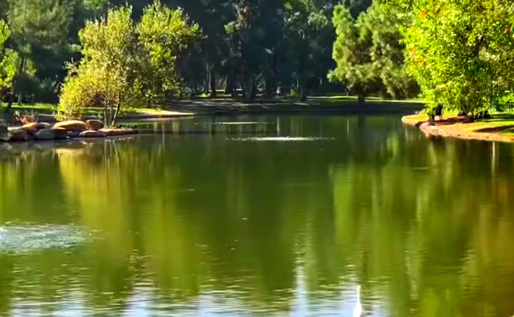 Yorba-Regional-Park-Lake-Fishing-Guide-Report-Anaheim-CA-09
