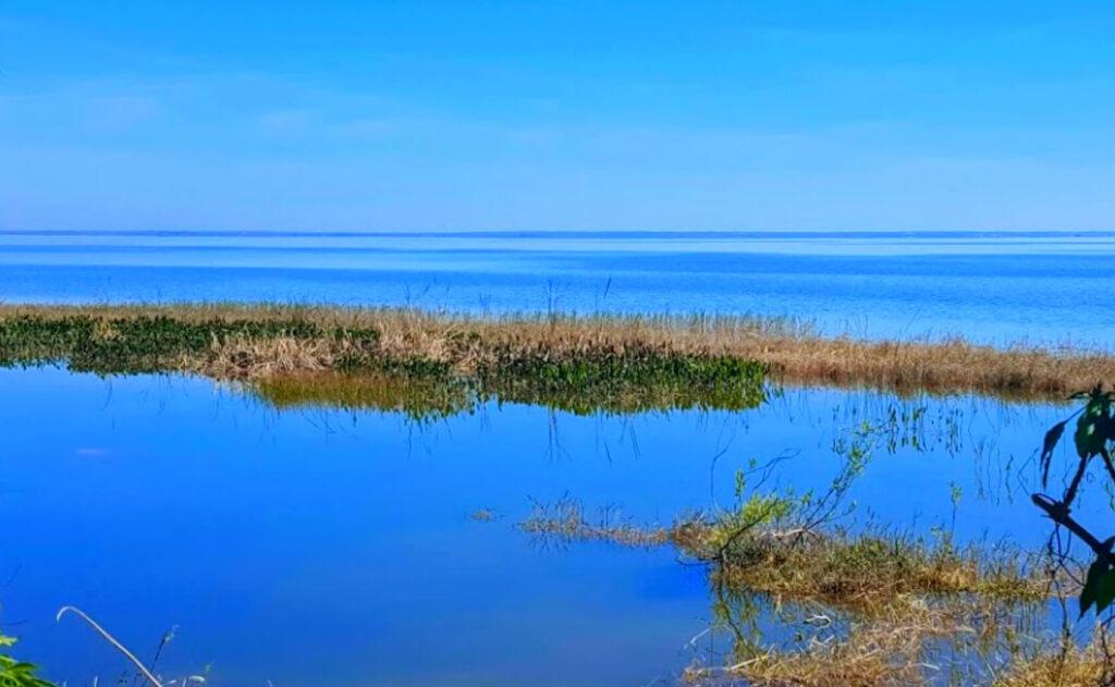 Apopka-Lake-Fishing-Guide-Report-Florida-01