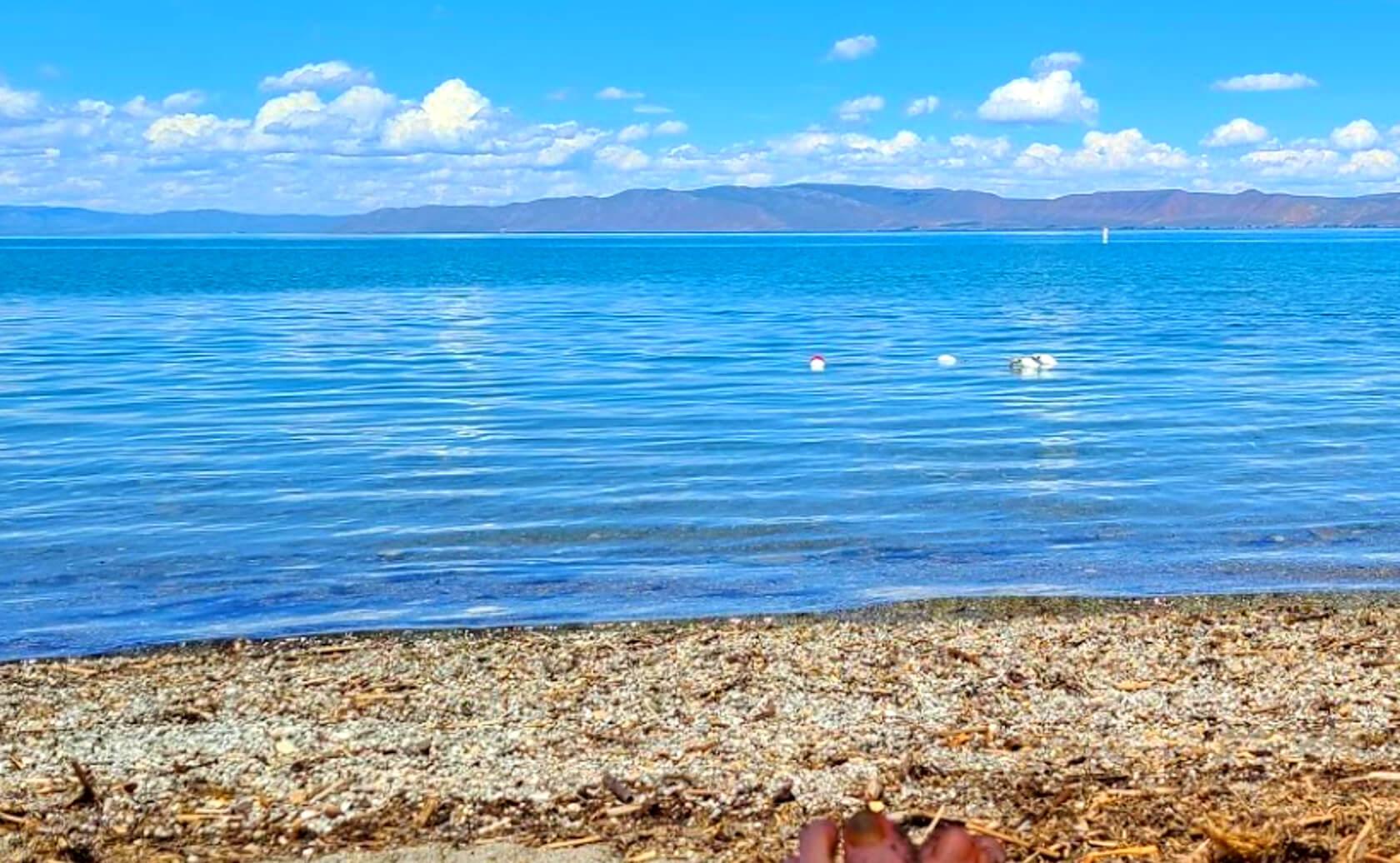 Bear-Creek-Lake-Fishing-Guide-Report-Utah-014