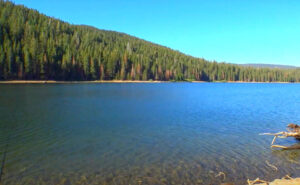 Bucks-Lake-Fishing-Guide-Report-California-01