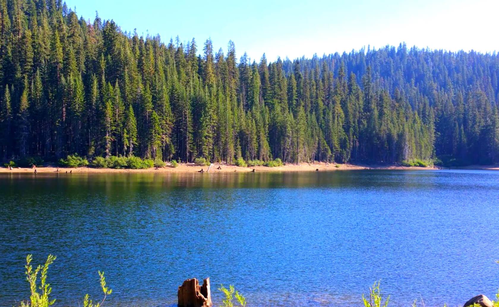 Bucks-Lake-Fishing-Guide-Report-California-03