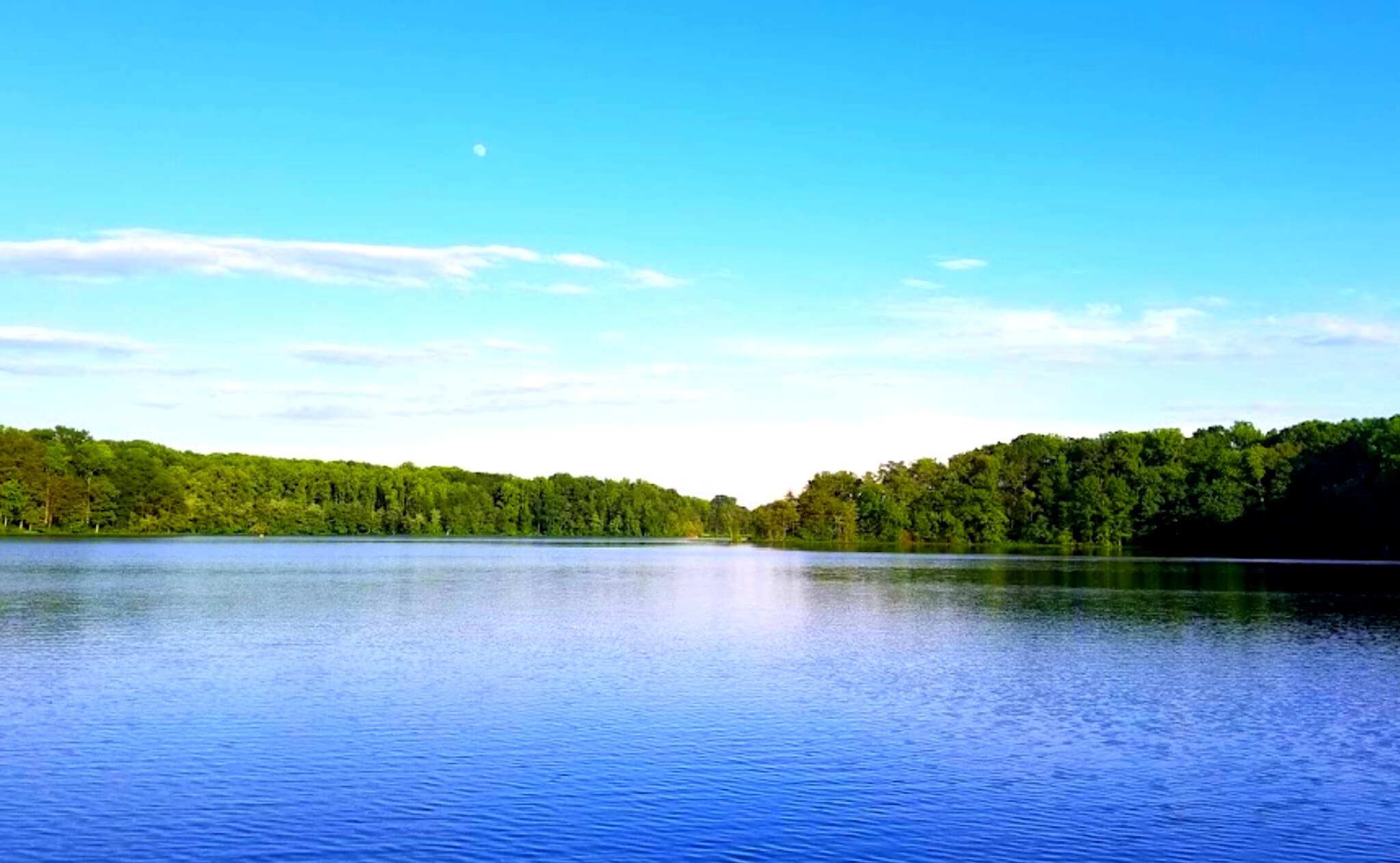 Burke-Lake-Fishing-Report-Guide-Virginia-VA-04