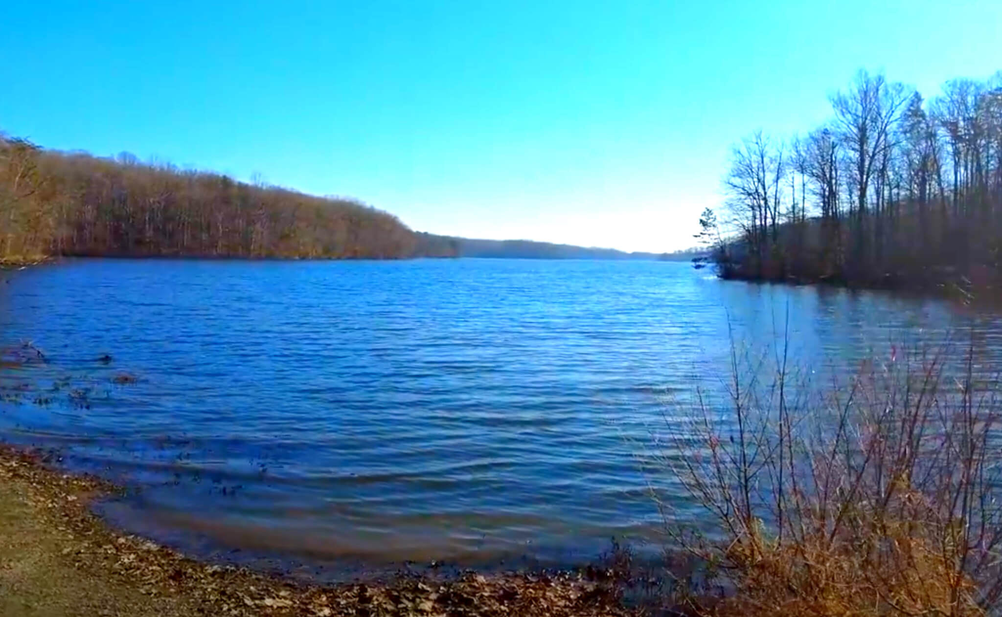 Burke-Lake-Fishing-Report-Guide-Virginia-VA-05