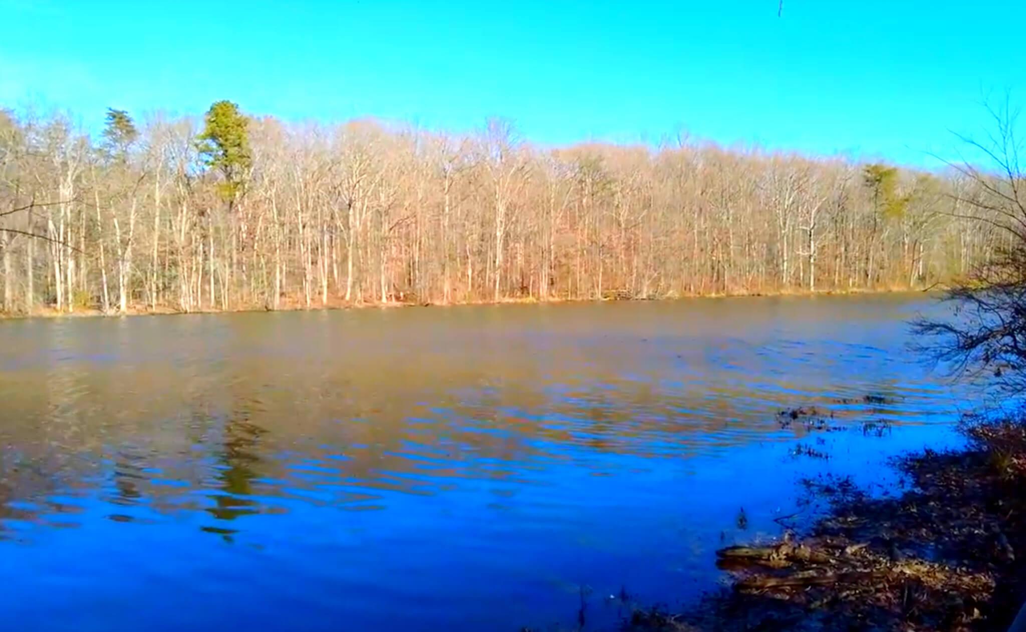 Burke-Lake-Fishing-Report-Guide-Virginia-VA-06